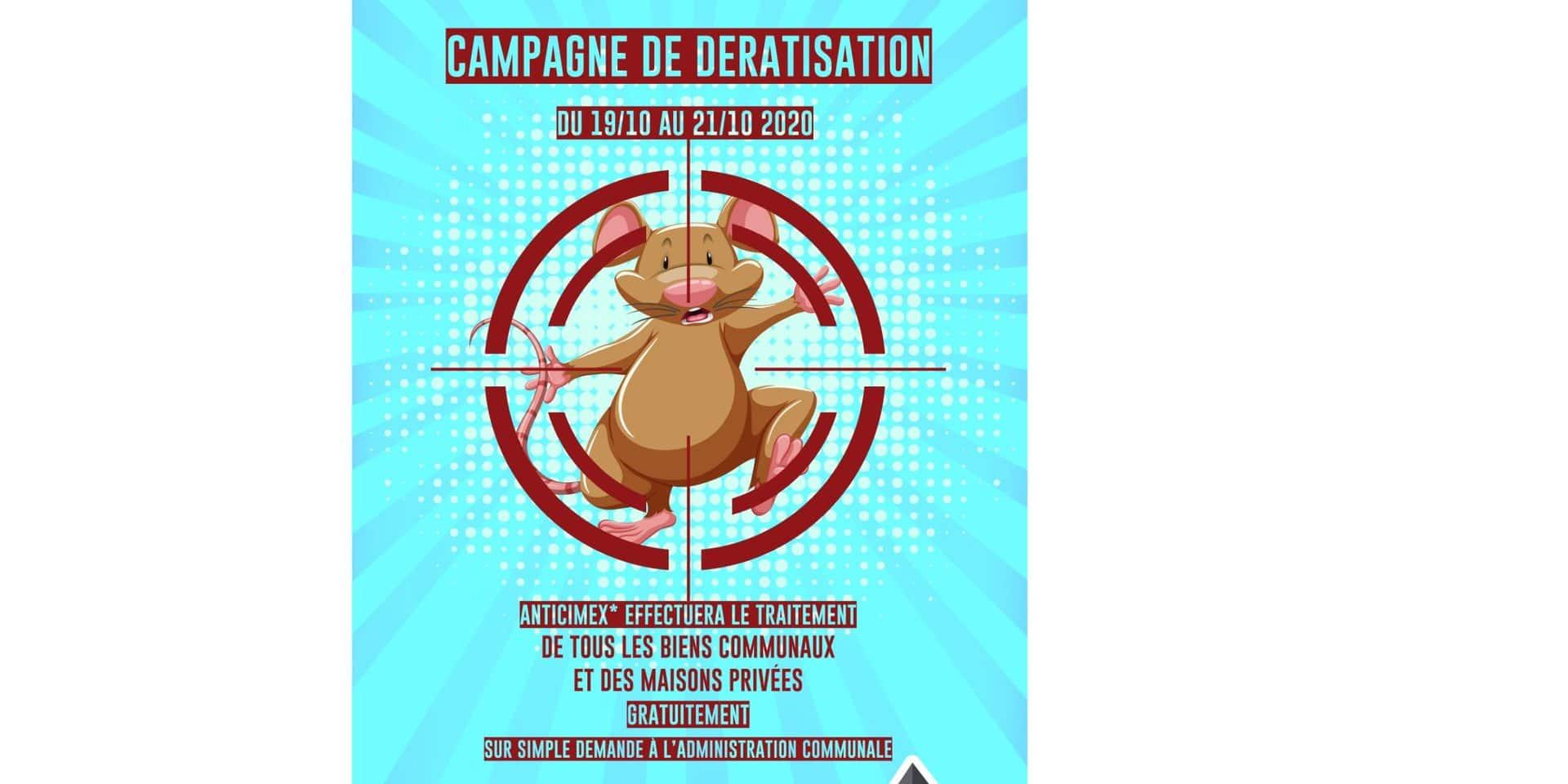 Leuze : campagne de dératisation