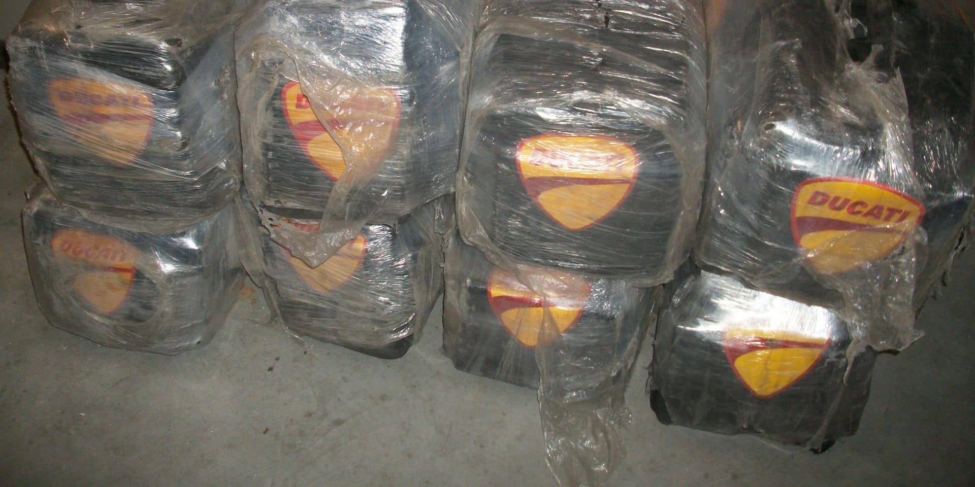 Près de 700 kilos de cocaïne découverts dans un container dans le port de Beveren