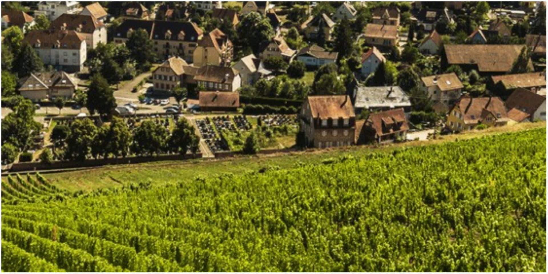 Quand le vin est tiré: la plus grande cave familiale de l'Hexagone