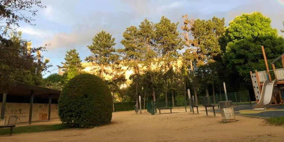 Pour ses 900 ans, Evere plante 900 arbres