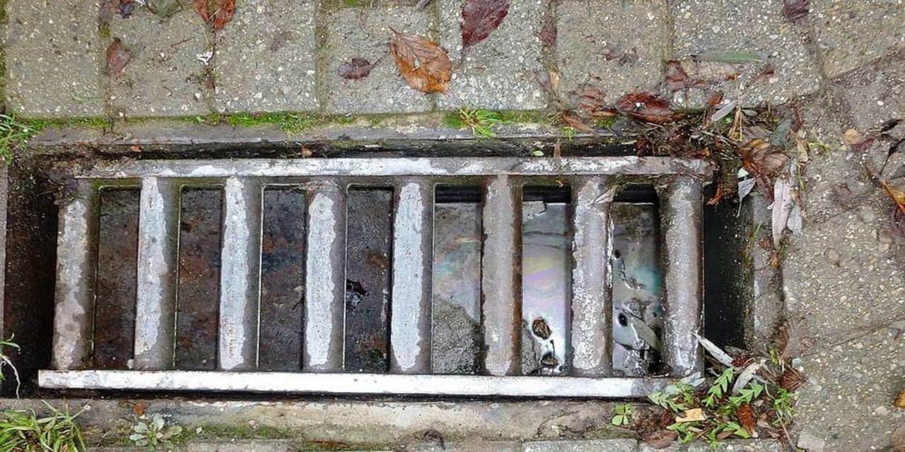 La Louvière: 15 000 avaloirs à nettoyer !