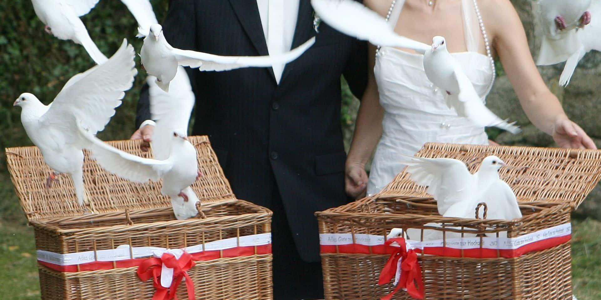 Une première en Belgique à Chapelle-lez-Herlaimont: les lâchers de colombes interdits pour les mariages