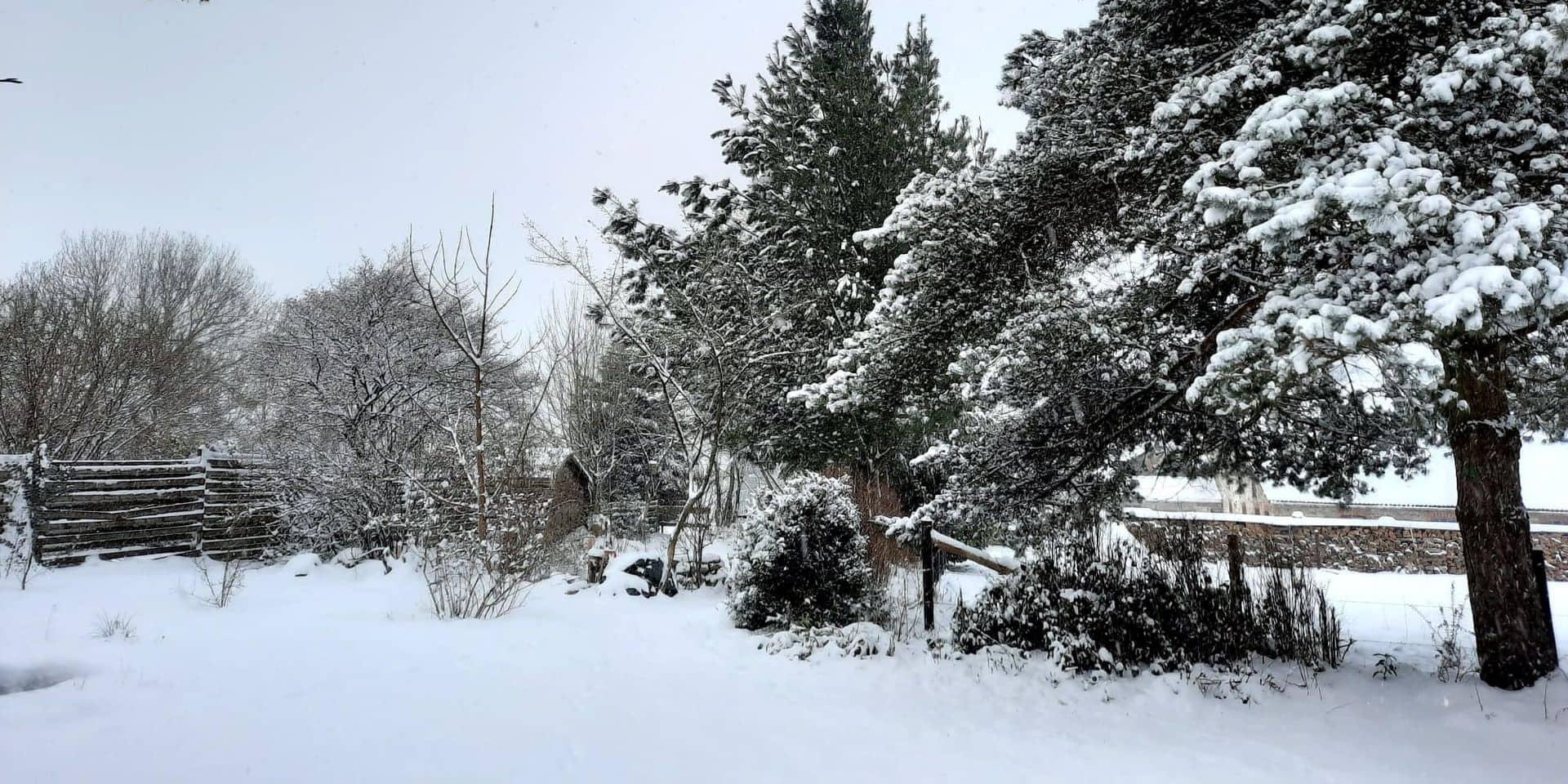 Baraque de Fraiture: 10 à 15 cm de neige, mais pas d'ouverture des pistes de ski