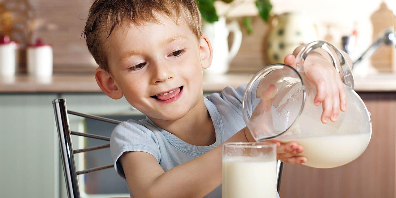 """Il est à la mode, mais attention: """"le lait végétal ne doit pas remplacer le lait de vache !"""""""