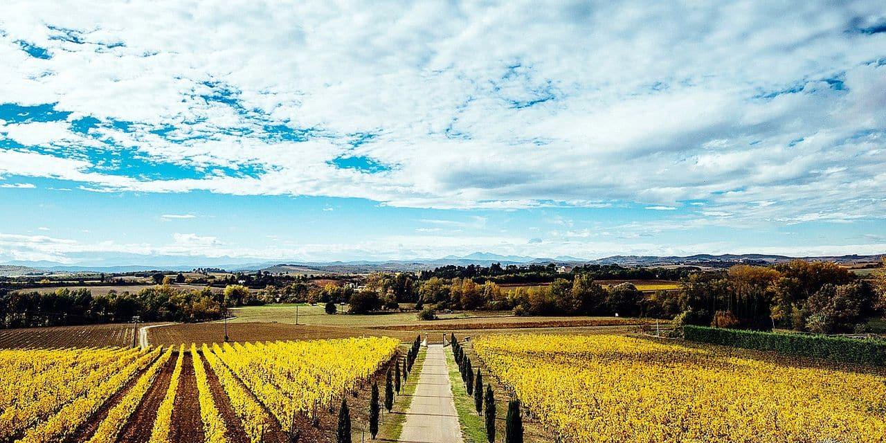 Gayda, à la croisée des terroirs: son histoire est remarquable et ses vins délicieux