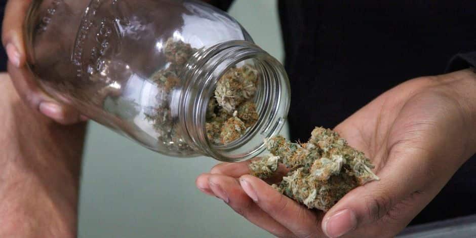 """""""Fournir du cannabis, à titre onéreux ou gratuit, reste une infraction"""""""