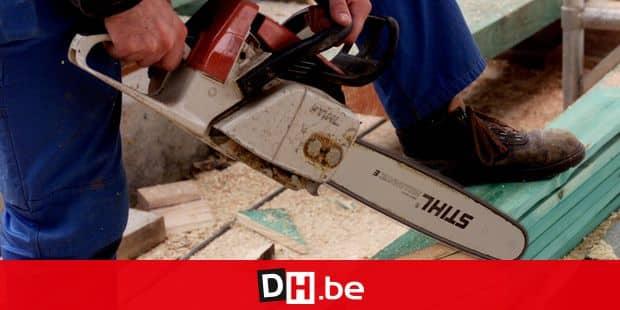 Tronçonneuse / Construction / Ouvrier / Immobilier