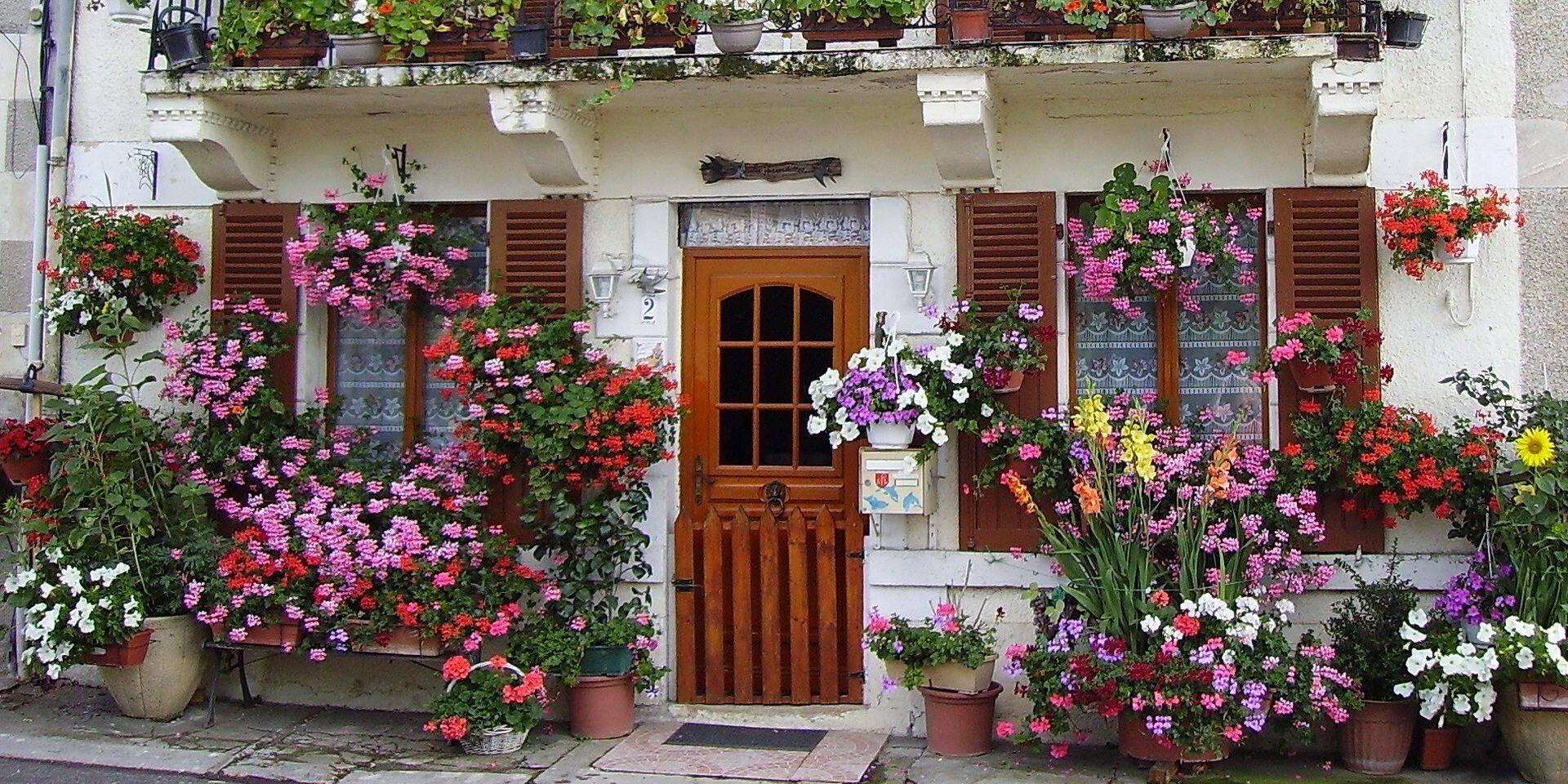 Charleroi: il faudra un permis pour poser un pot de fleurs devant chez soi