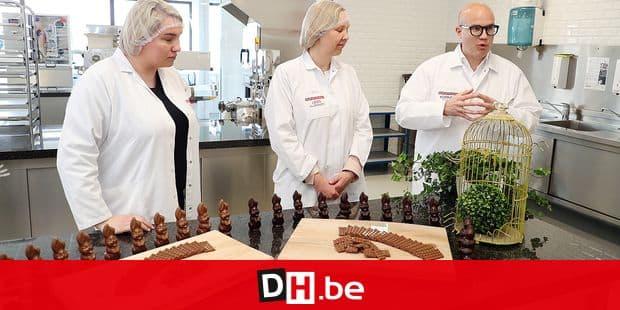 chocolat Barry Callebaut Belgium/ Lebbeke-Wieze