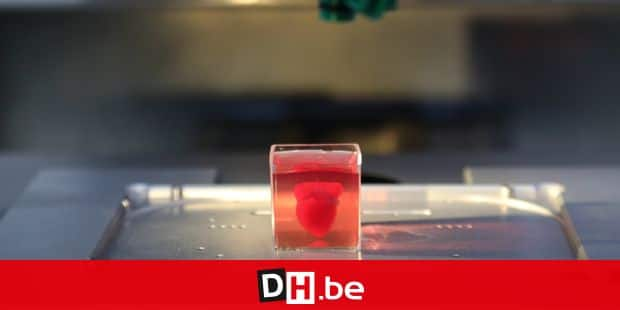 """(190416)-- TEL AVIV, April 16, 2019 () Photo taken on April 15, 2019 shows a 3D-printed heart with human tissue at the University of Tel Aviv in Israel. Tel Aviv University scientists said on Monday that they have printed the first 3D heart, by using patient's cells and materials. The heart, which was produced in a lab, completely matches the biological characteristics of the patient's heart. It took about three hours to print the whole heart. Making a human heart model is a major medical breakthrough. However, the printed vascularized and engineered heart is approximately 100 times smaller than a real human heart. TO GO WITH """"Feature: Israeli scientists use 3D printing to create world's 1st model of human heart"""" (/JINI/Gideon Markowicz) Reporters / Photoshot"""