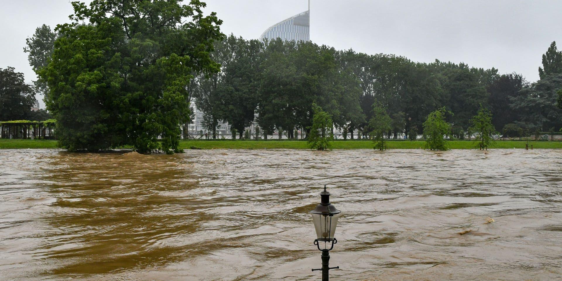 Inondations : pour les animaux aussi à Péruwelz et alentours !