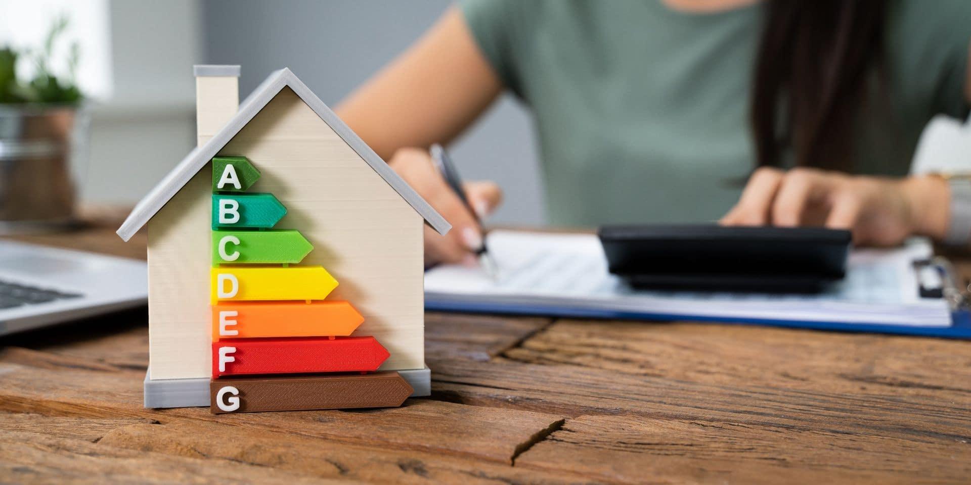 Energie: 35.000 ménages wallons en défaut de paiement, dénonce le PTB