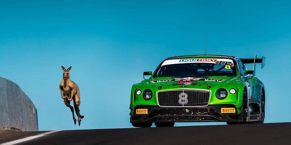 Bentley arrête son programme en IGTC