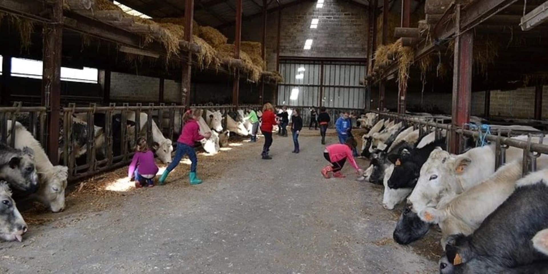 """Trois exploitations agricoles luxembourgeoises obtiennent le label """"Ferme pédagogique"""""""