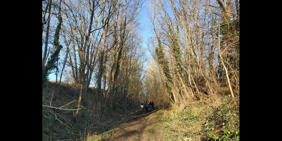 Ecaussinnes : La commune rassure les citoyens à propos de la réhabilitation de la ligne 106