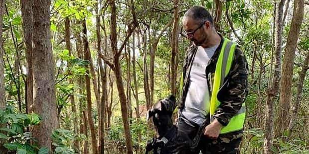 Disparition de Theo Hayez: à Byron Bay les bénévoles ne désarment pas