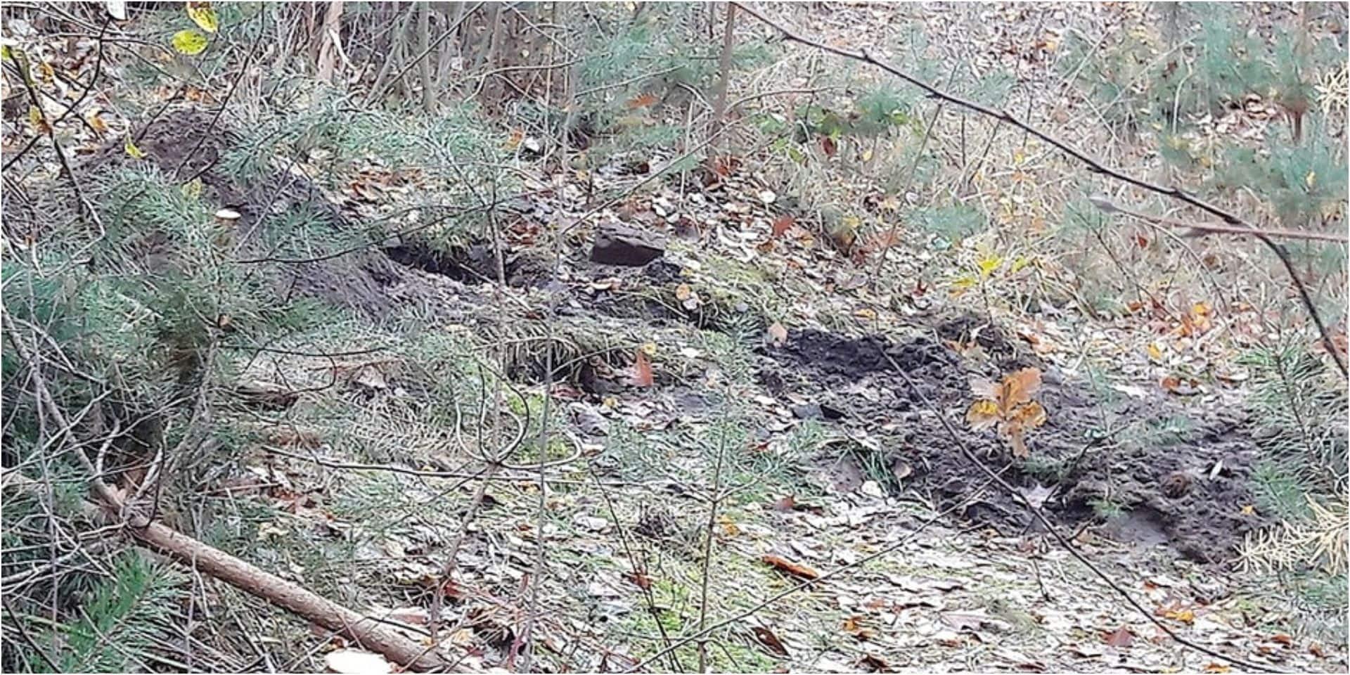 Cadavre sans tête à La Hulpe : deux inculpations