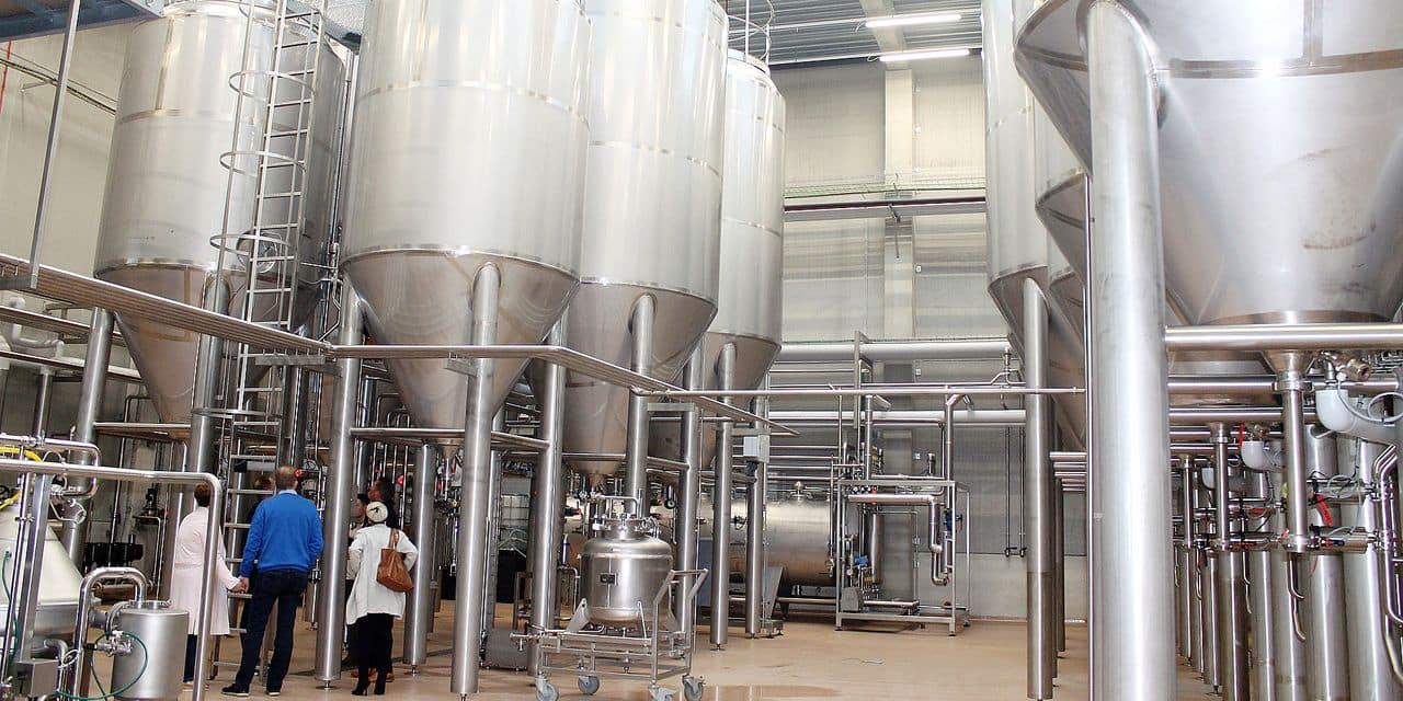 Le brassage des bières ADA de retour sur le sol thudinien