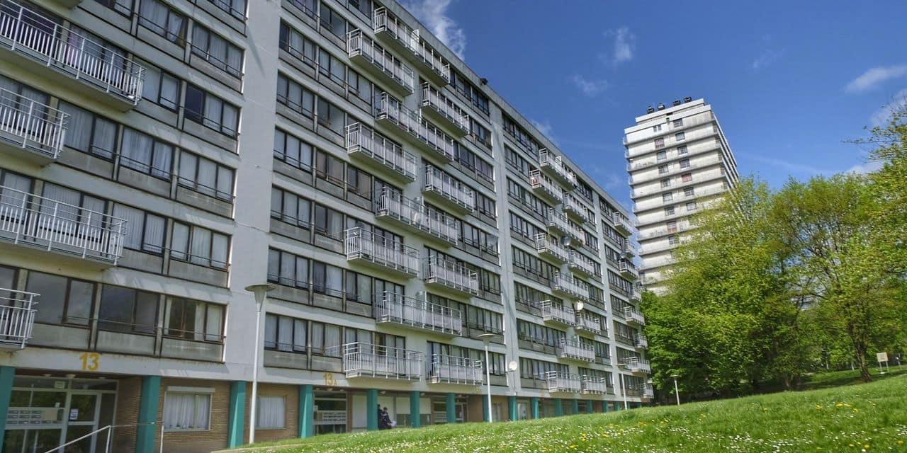 Les logements sociaux de Peterbos à Anderlecht seront rénovés