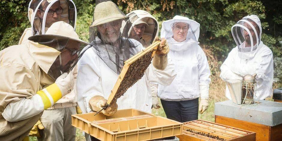 Anderlecht : Inauguration d'un rucher au Peterbos