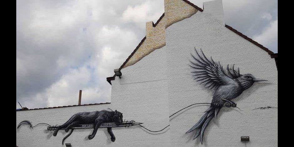 Mons, capitale en devenir du street art
