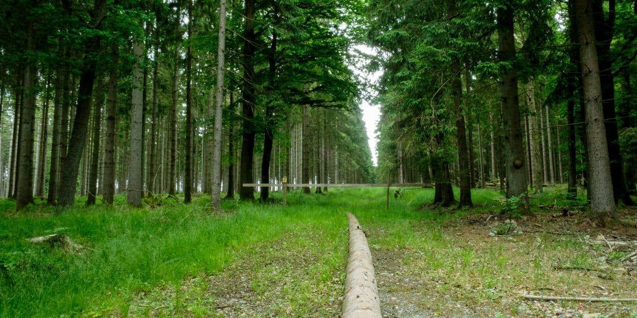Parc national : la Province intègre la candidature de Nassonia