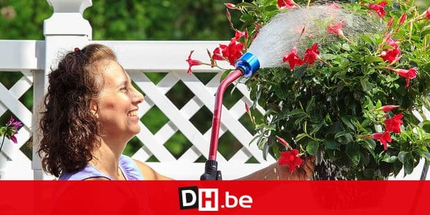 MODEL RELEASED. Woman with Spina Bifida spraying flowers with a garden hose Reporters / Science and Photo