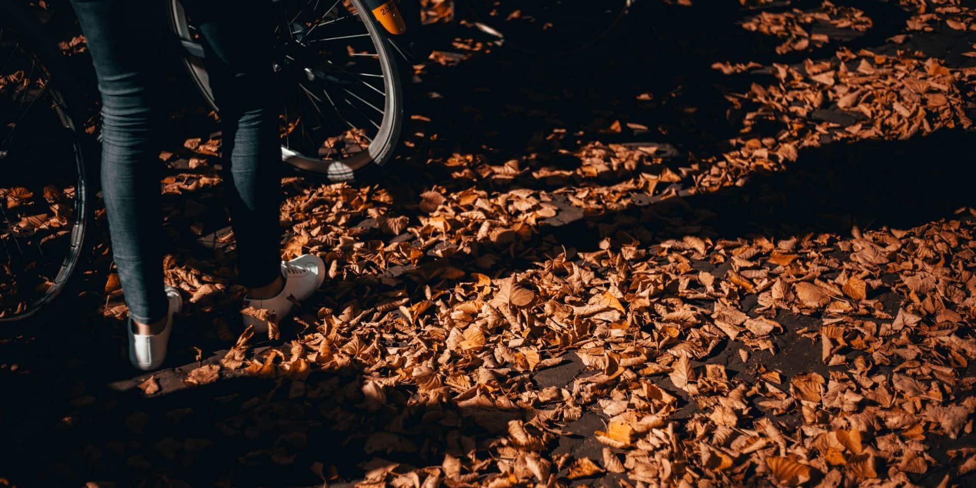 L'automne est bien installé, que faire de nos feuilles mortes ?