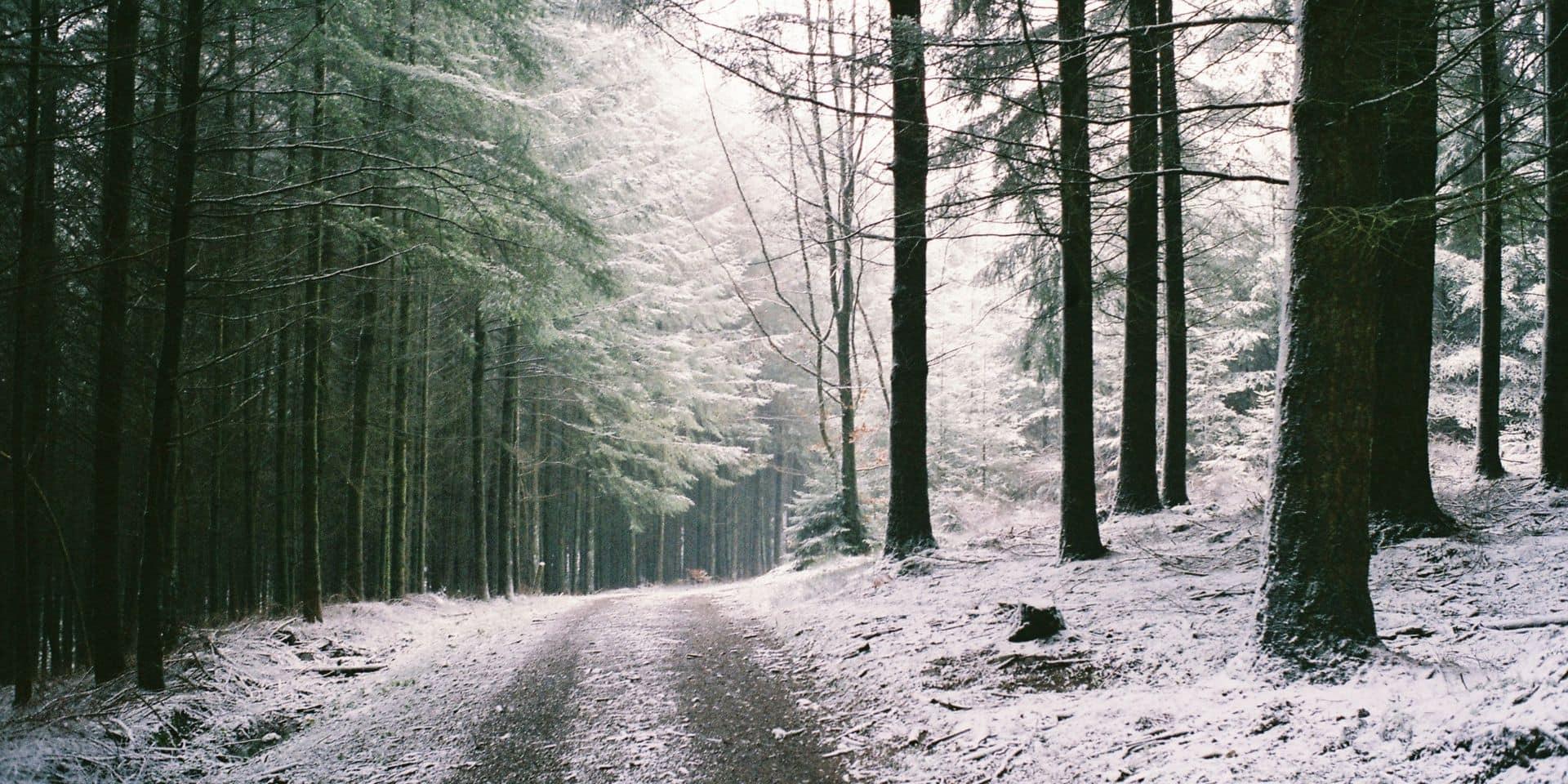 Météo: les premières neiges pourraient bien tomber en fin de semaine