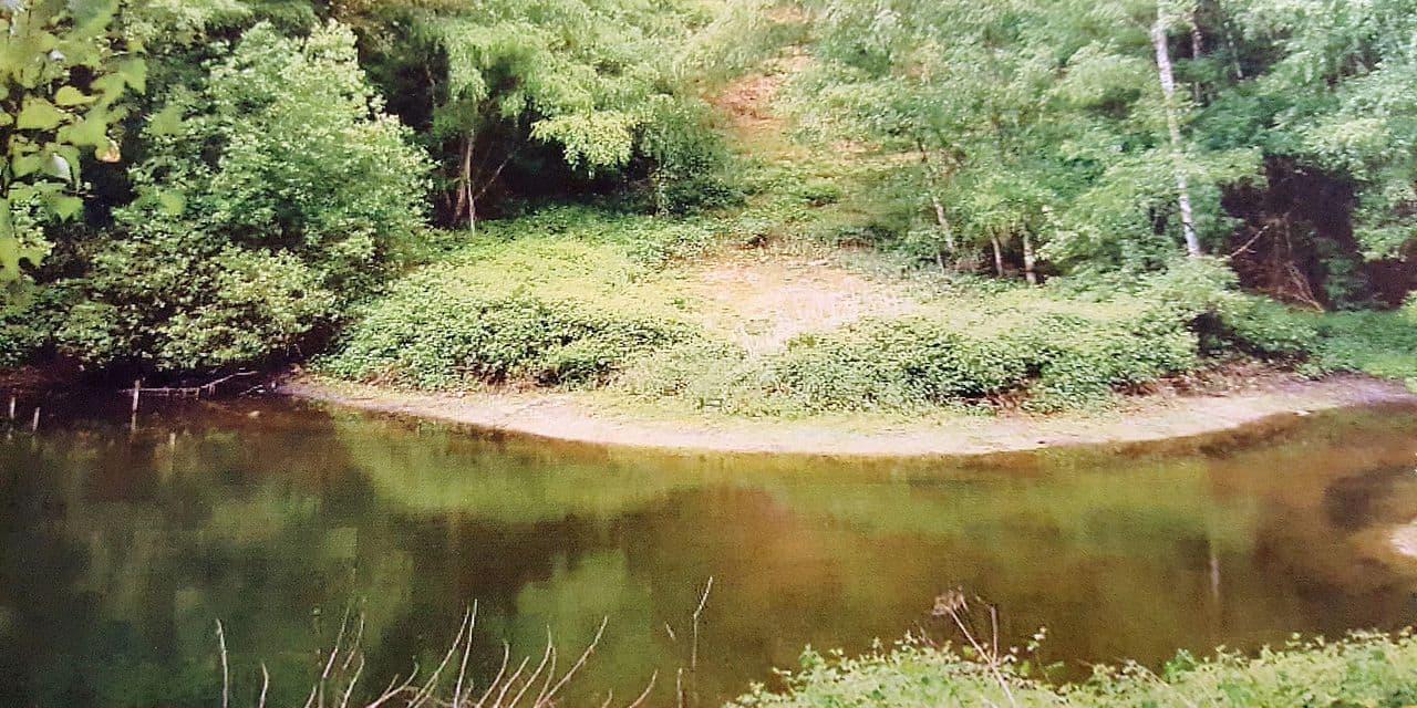 Une nouvelle réserve naturelle à Lasne