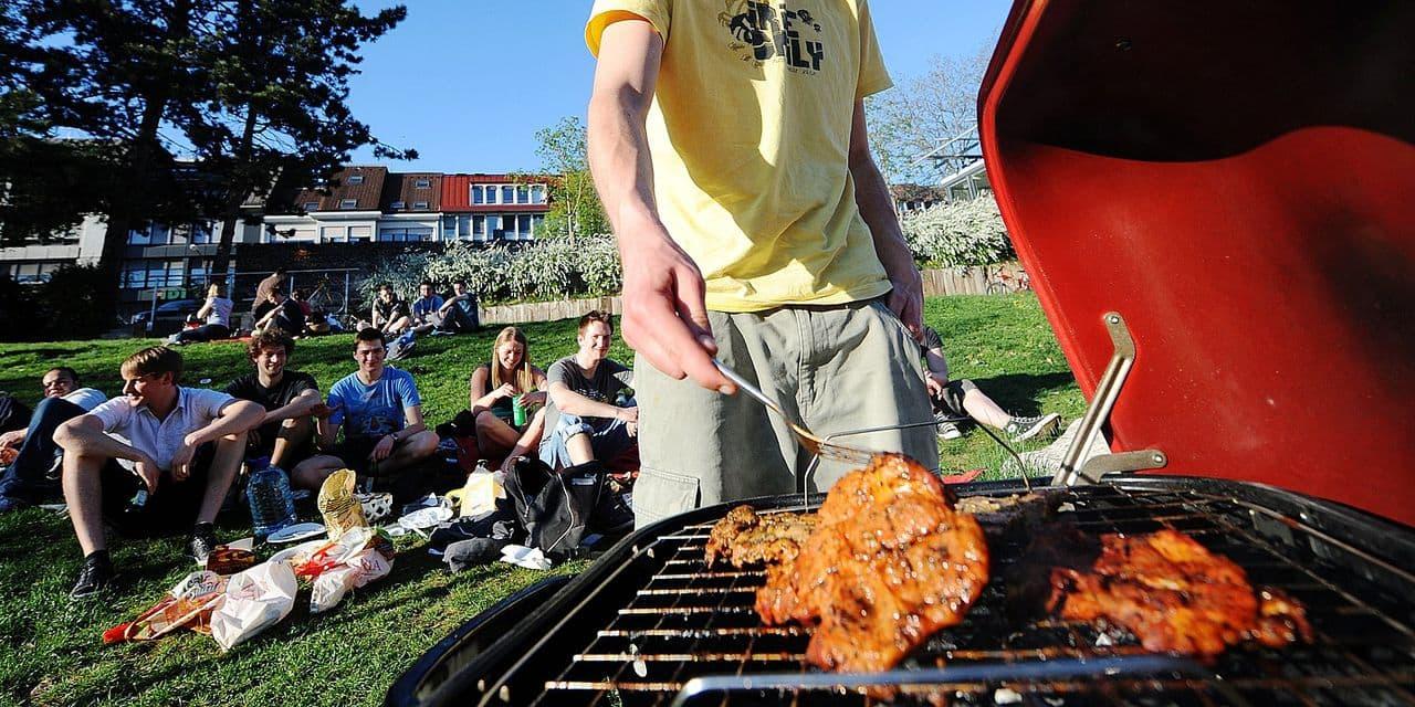 Barbecue Ou Plancha Que Choisir au charbon, au gaz ou électrique : comment choisir le