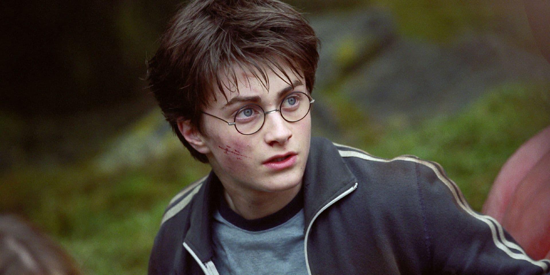 Les fêtes approchent: c'est magique, Harry Potter est de retour !
