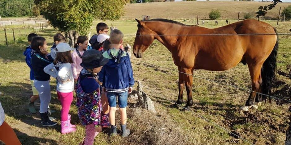 Lens: une première expérience à la ferme pour les enfants de 1 à 4 ans